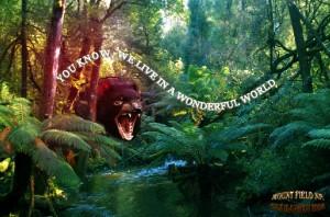 Mount field np, tasmanien