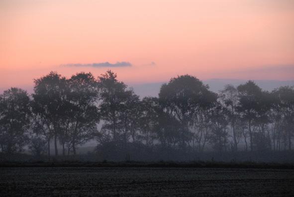 Morgen i Paderup