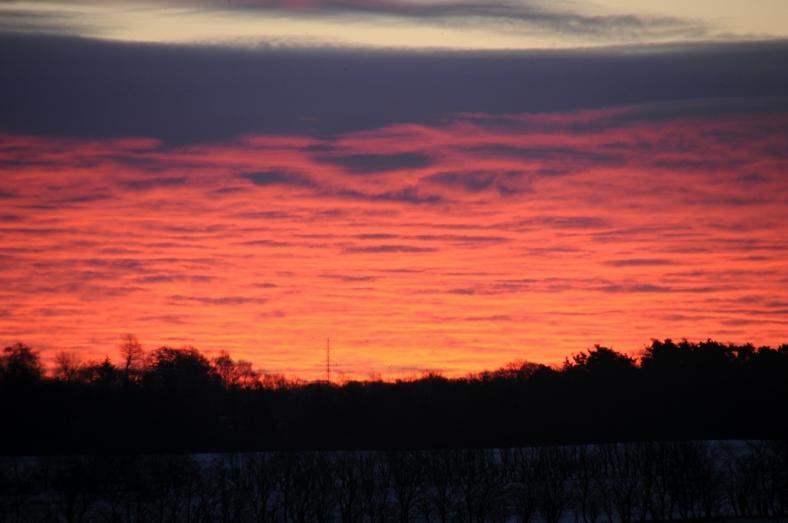 Vintermorgen over Paderup