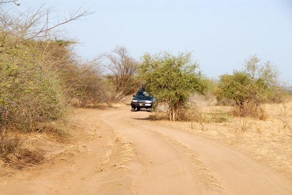 Bushen mellem Murulle og Turmi, Nedre Omodal