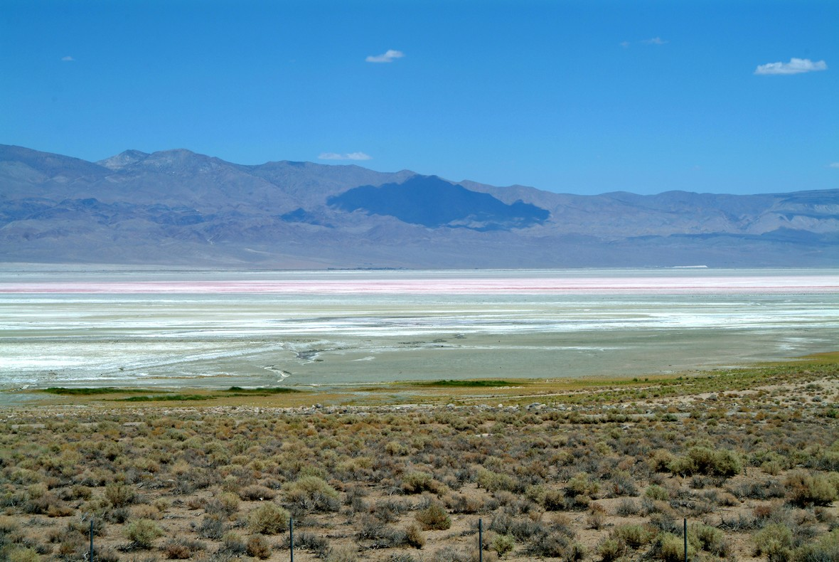 Mojave ørkenen