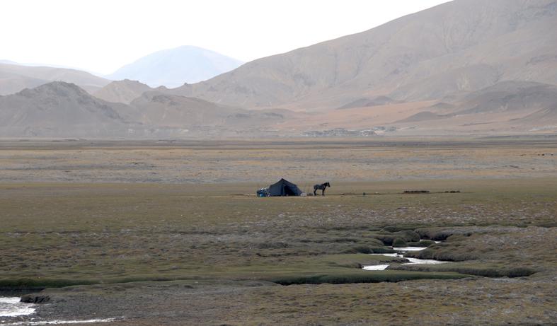 Nomader på plateauet