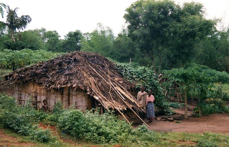 Stammefolk, Parambikulam, Kerala