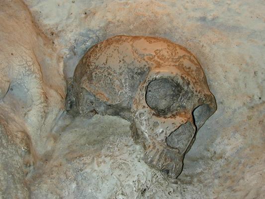 En af hulerne på Gibraltat, hvor der er fundet fossiler af neandertalere