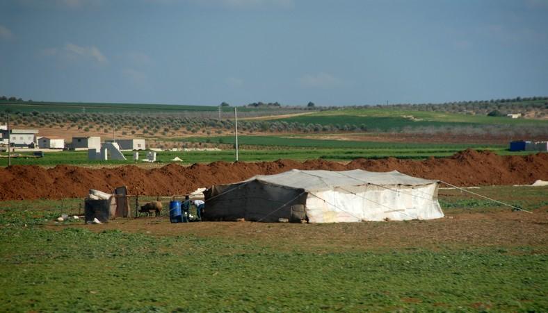Beduiner ved Apemera