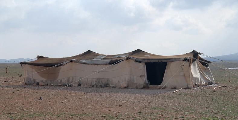 Beduiner, syriske ørken