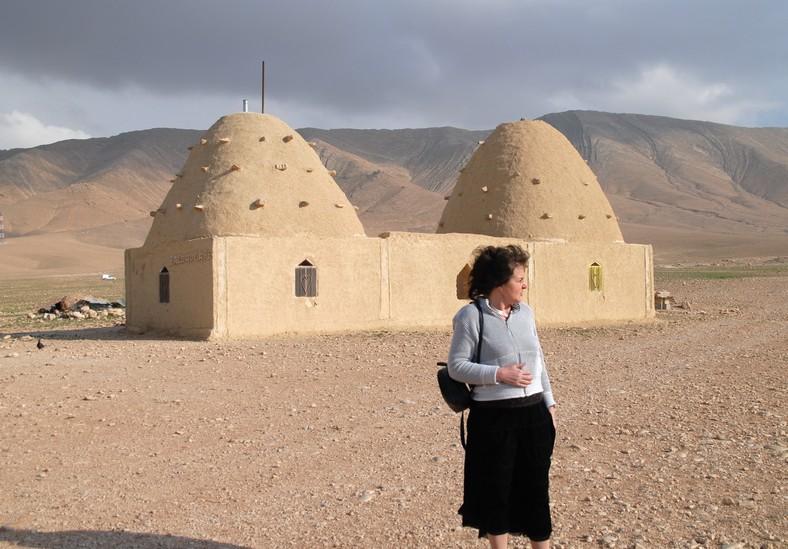 Adobe huse, syriske ørken