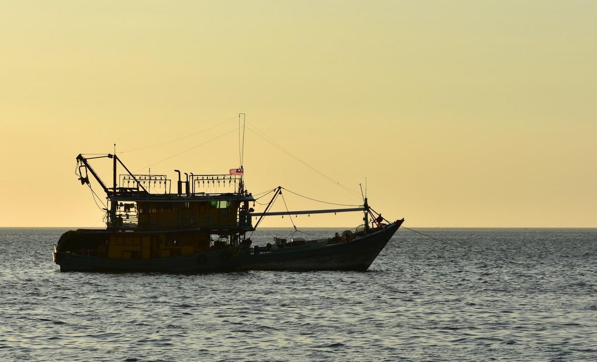 FISKEBÅDE, HAVNEN, KOTA KINABALU
