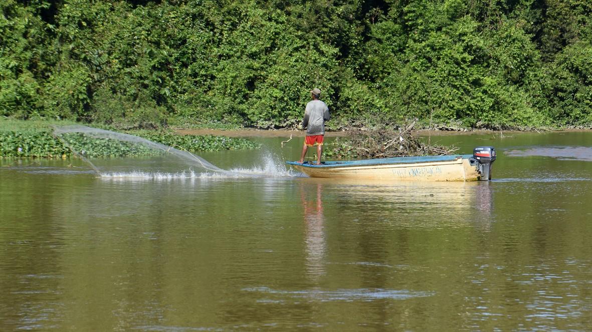 EN FISKER, KINABATANGAN-FLODEN